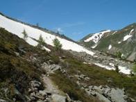June Alp Snow