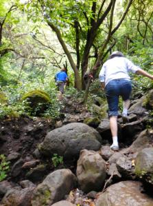 Bruce Ashford leading hike