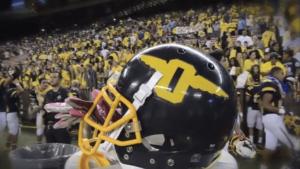 Aloha Stadium Helmet